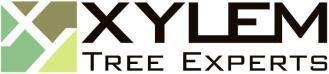 Xylem Tree Service